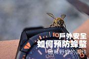 如何預防蜂螫 瞭解野蜂的習性