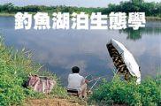 釣魚湖泊生態學
