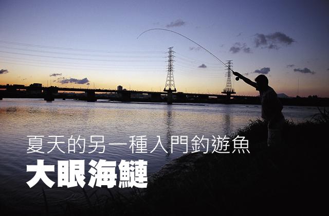 夏天的另一種入門釣遊魚  大眼海鰱夏天的另一種入門釣遊魚  大眼海鰱