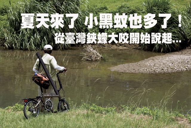 夏天來了 小黑蚊也多了!夏天來了 小黑蚊也多了!從臺灣鋏蠓大咬說起