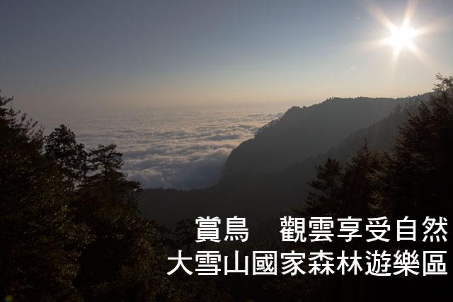 大雪山國家森林遊樂區賞鳥 觀雲大雪山國家森林遊樂區 賞鳥 觀雲享受自然